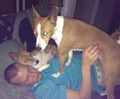 attachment_t_15611_0_basenji-life.jpg