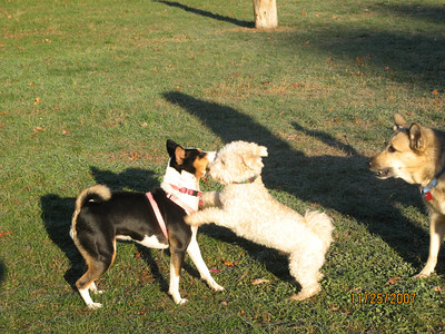 attachment_t_2507_2_lillie-and-oliver-at-park.jpg